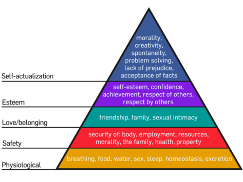 Maslow-hirerarchy
